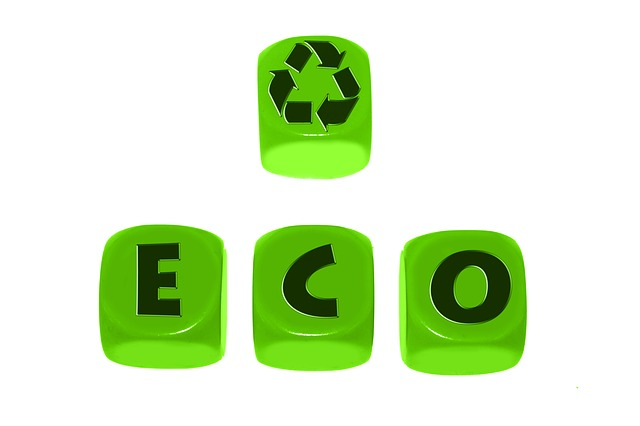 Обеспечение экологической безопасности руководителями и специалистами общехозяйственных систем управления (72 ак. ч.)